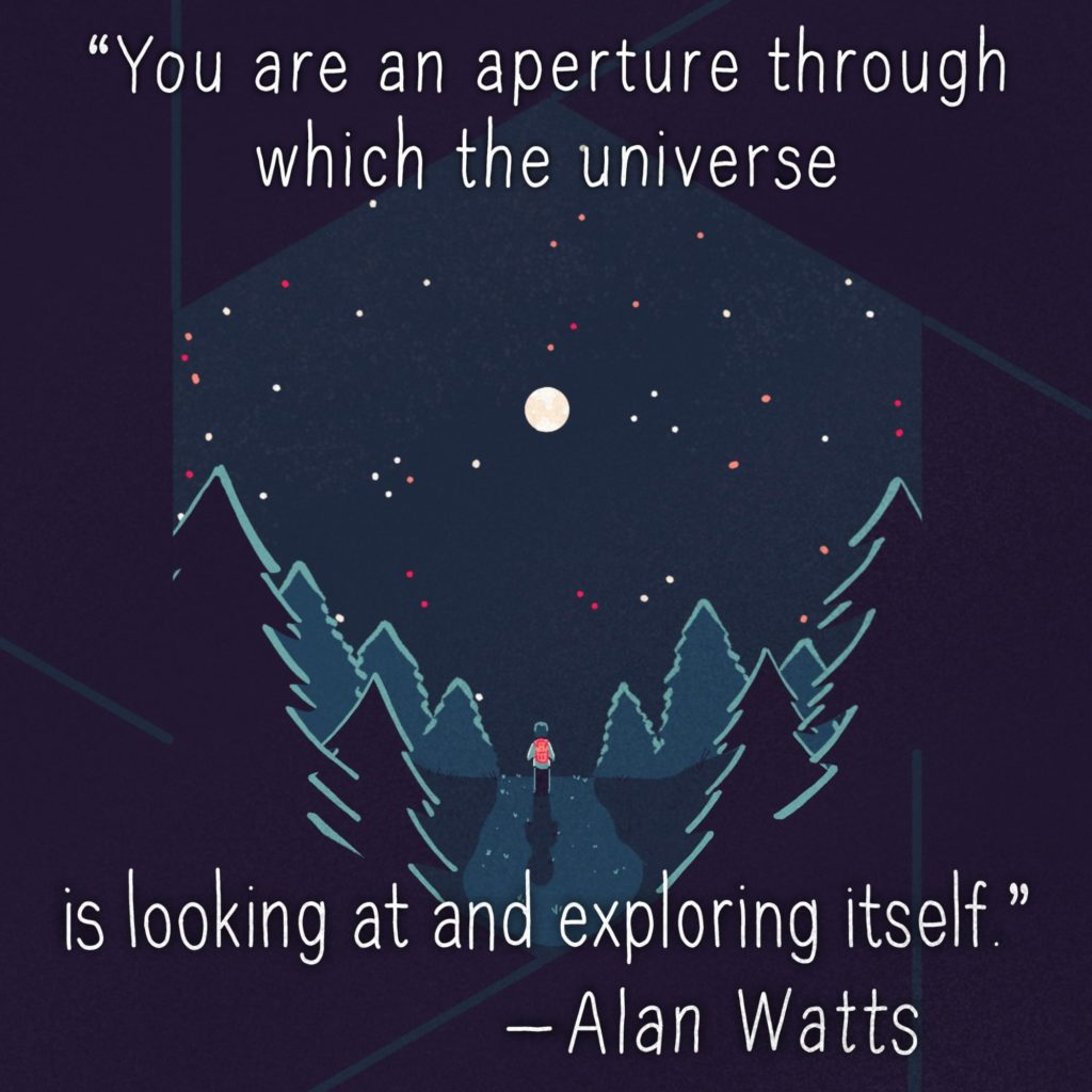 You are an aperture through which the universe is looking at and exploring itself.
