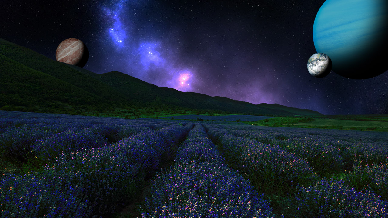 A lilac field at night with planets in the sky.