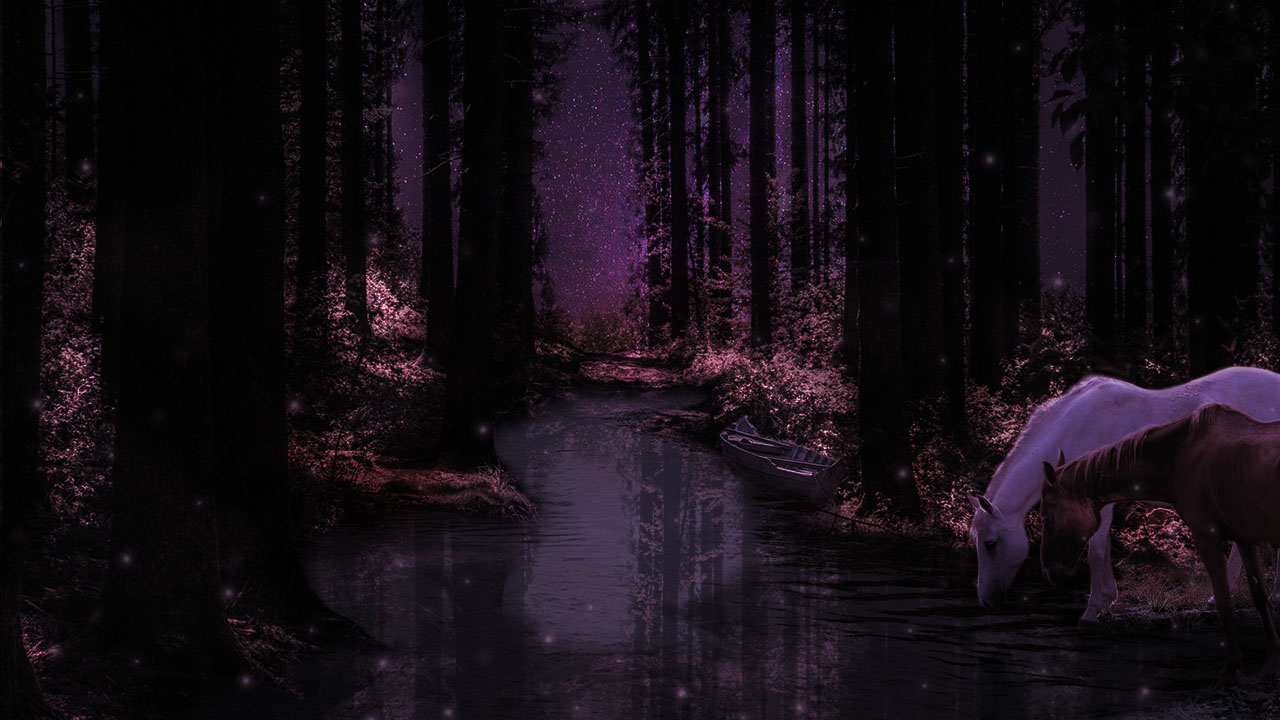 A forest at night with horses drinking from a stream.