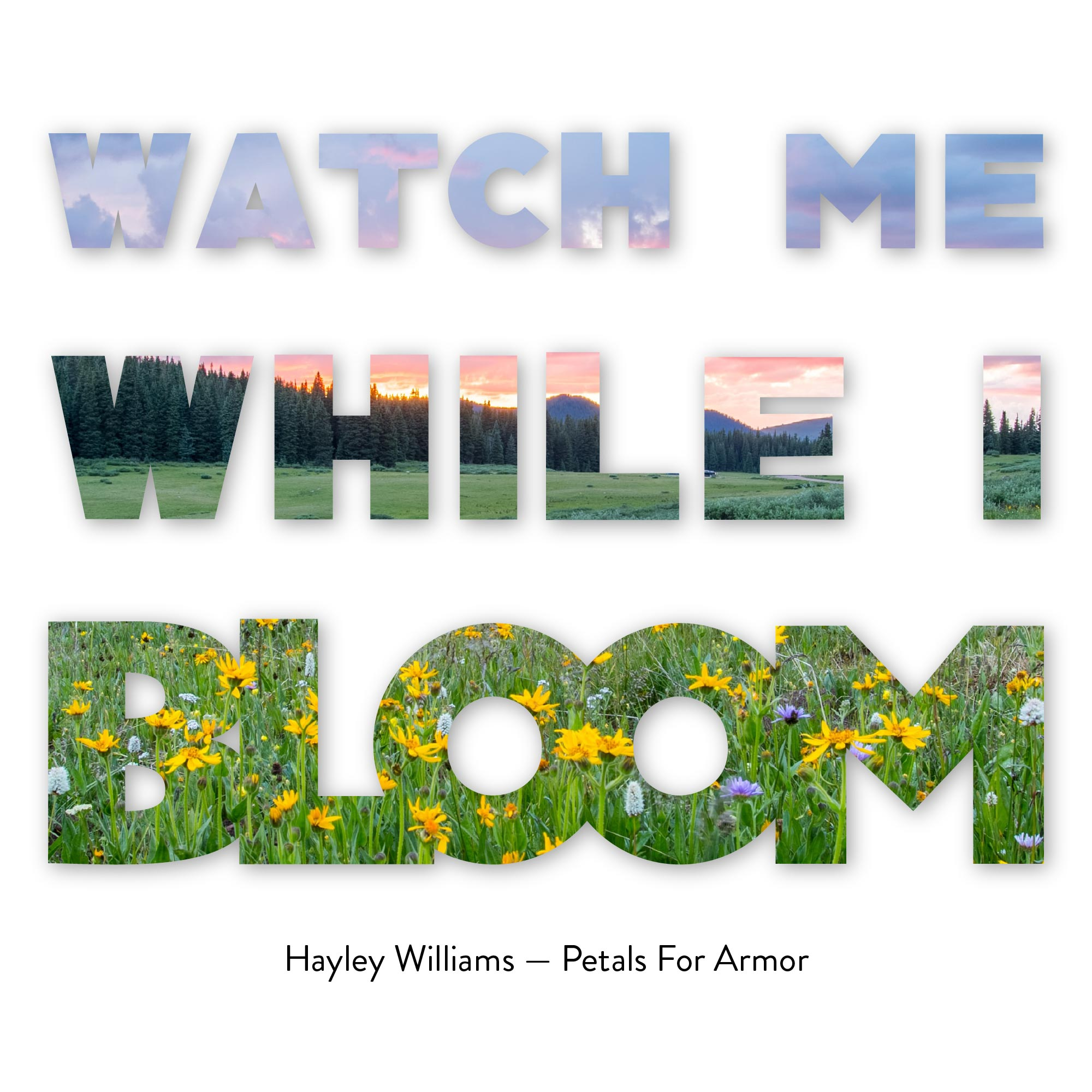 Watch me while I Bloom